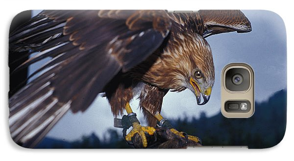 Galaxy Case featuring the photograph Falcon by Carl Purcell