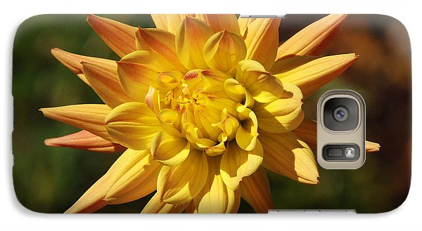 Galaxy Case featuring the photograph Fall Flower by Richard Bryce and Family