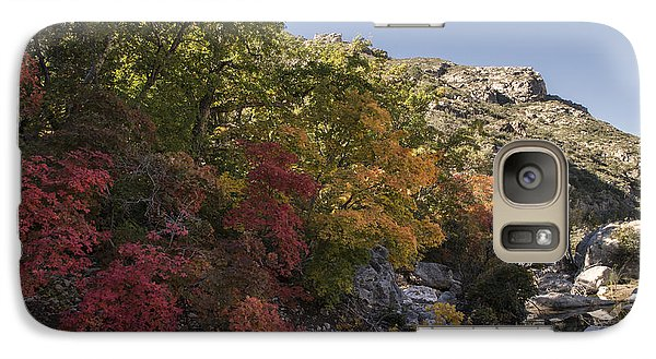 Galaxy Case featuring the photograph Fall Foliage In The Guadalupes by Melany Sarafis