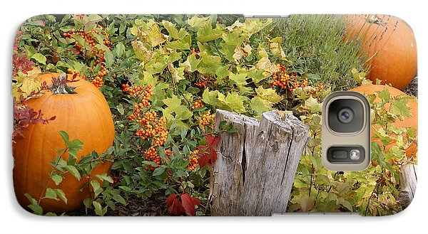 Galaxy Case featuring the photograph Fall Garden by Cynthia Powell