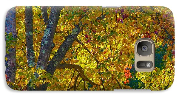 Galaxy Case featuring the photograph Fall Glory On Route 53 by Polly Castor