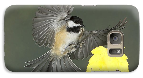 Galaxy Case featuring the photograph Fall Is In The Air by Gerry Sibell