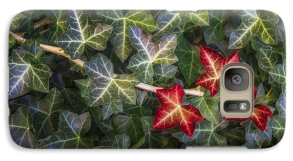 Galaxy Case featuring the photograph Fall Ivy Leaves by Adam Romanowicz