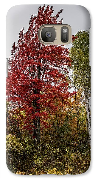 Galaxy Case featuring the photograph Fall Maple by Paul Freidlund