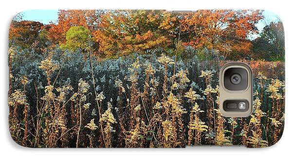 Galaxy Case featuring the photograph Fall Prairie In Moraine Hills by Ray Mathis