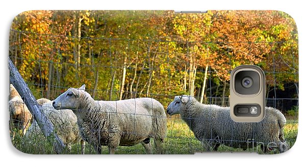Galaxy Case featuring the photograph Fall Sheep by Christopher Mace