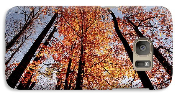 Galaxy Case featuring the photograph Fall Trees Sky by Meta Gatschenberger