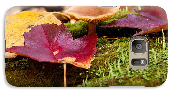 Galaxy Case featuring the photograph Fallen Leaves And Mushrooms by Brent L Ander