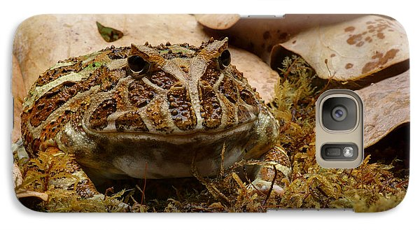 Galaxy Case featuring the photograph Fantasy - Horned Frog by Nikolyn McDonald