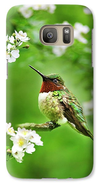 Fauna And Flora - Hummingbird With Flowers Galaxy S7 Case by Christina Rollo
