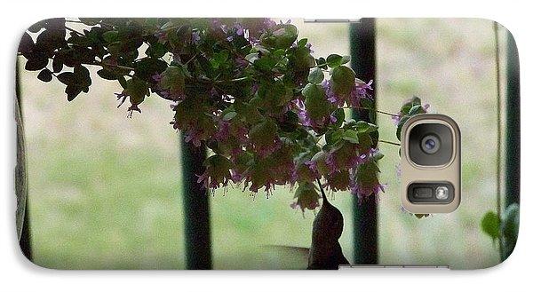 Feeding Hummingbird Galaxy S7 Case