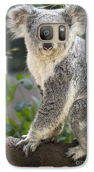 Female Koala Galaxy S7 Case