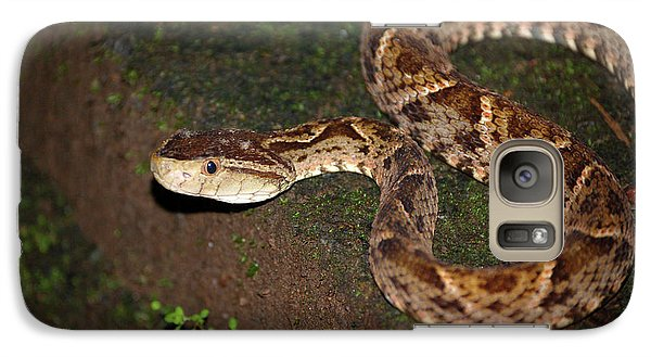 Galaxy Case featuring the photograph Fer-de-lance, Botherops Asper by Breck Bartholomew