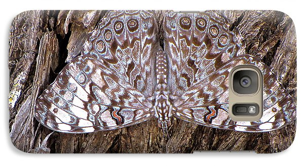 Galaxy Case featuring the photograph Ferentina Calico Butterfly by Sean Griffin