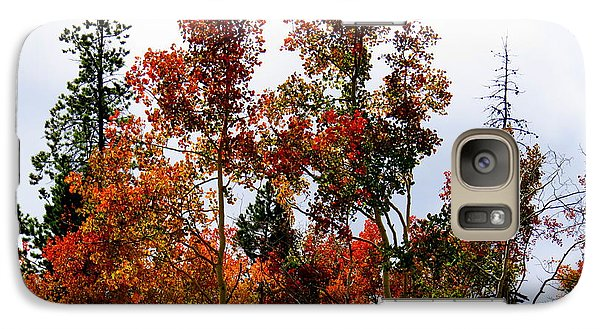 Galaxy Case featuring the photograph Festive Fall by Karen Shackles