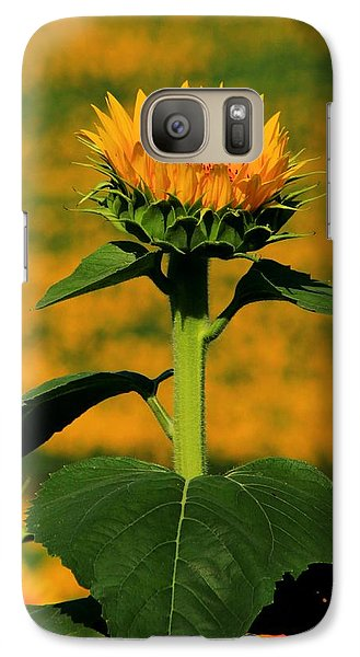 Galaxy Case featuring the photograph Field Of Gold by Chris Berry