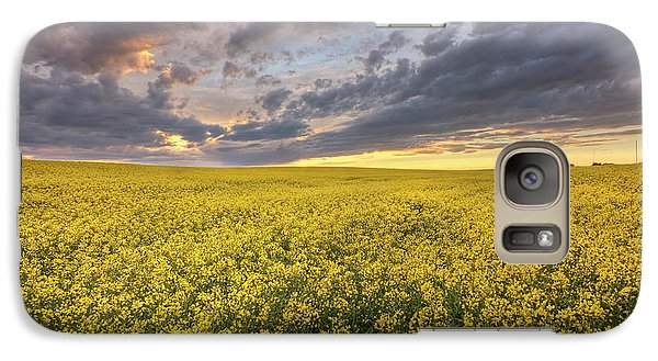 Galaxy Case featuring the photograph Field Of Gold by Dan Jurak