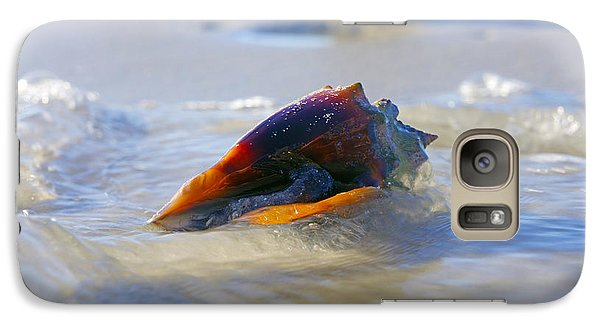 Galaxy Case featuring the photograph Fighting Conch On Beach by Robb Stan