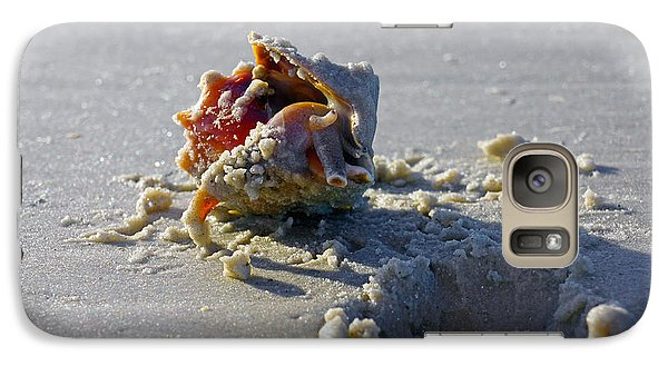 Galaxy Case featuring the photograph Fighting Conch On The Beach by Robb Stan