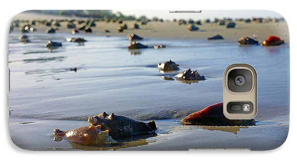 Galaxy Case featuring the photograph Fighting Conchs On The Beach In Naples, Fl by Robb Stan