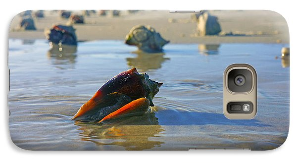 Galaxy Case featuring the photograph Fighting Conchs On The Sandbar by Robb Stan