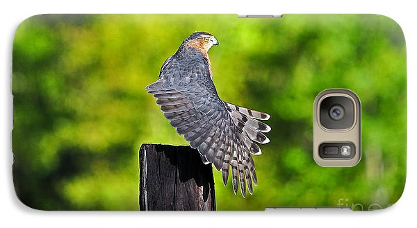 Galaxy Case featuring the photograph Fine Feathers by Al Powell Photography USA