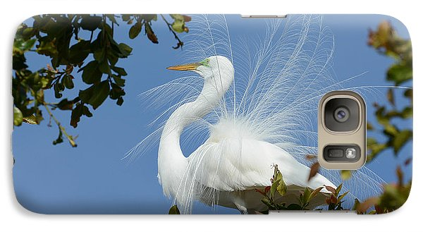 Galaxy Case featuring the photograph Finery by Fraida Gutovich