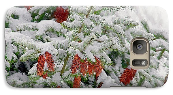 Galaxy Case featuring the photograph Fir Cones On White Photo Art by Sharon Talson