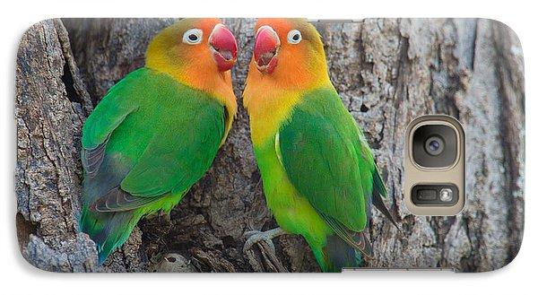 Fischers Lovebird Agapornis Fischeri Galaxy S7 Case