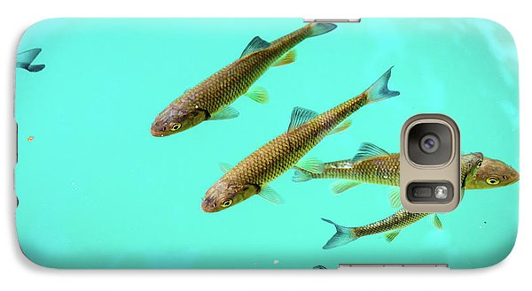 Fish School In Turquoise Lake - Plitvice Lakes National Park, Croatia Galaxy S7 Case