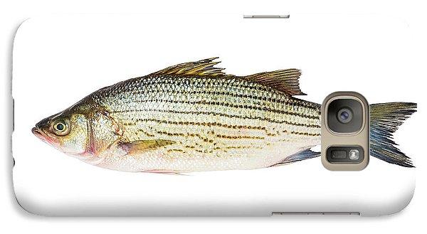 Fish Galaxy S7 Case