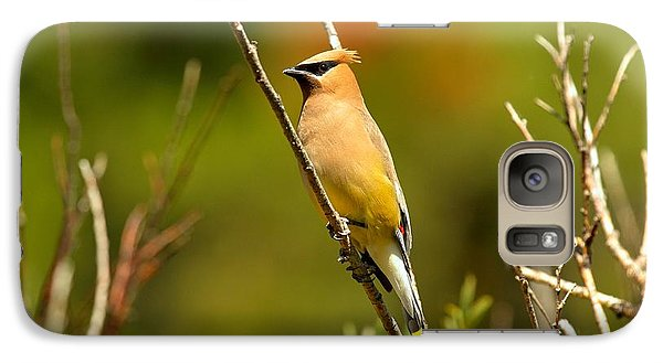 Fishercap Cedar Waxwing Galaxy Case by Adam Jewell