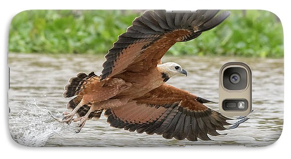 Galaxy Case featuring the photograph Fishing Hawk by Wade Aiken