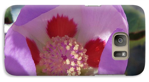 Galaxy Case featuring the photograph Five-spot by Michele Penner