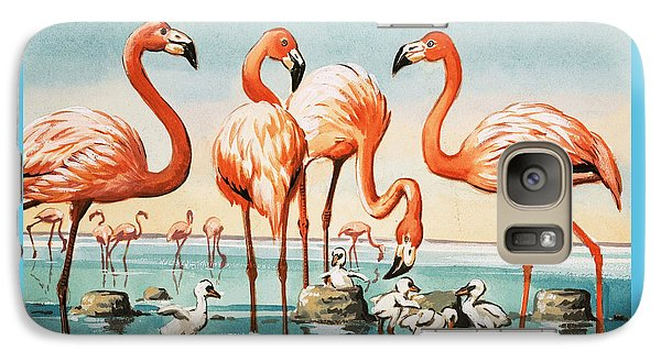 Flamingoes Galaxy S7 Case