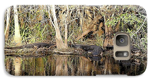 Galaxy Case featuring the photograph Florida Gators - Everglades Swamp by Jerry Battle