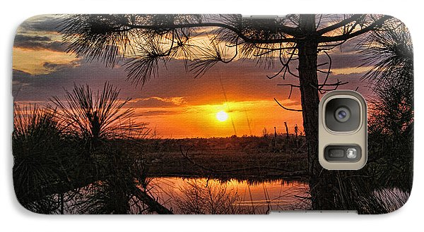 Galaxy Case featuring the photograph Florida Pine Sunset by HH Photography of Florida