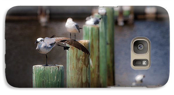 Galaxy Case featuring the photograph Florida Seagull Playing by Jason Moynihan