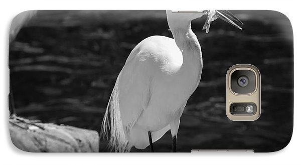Galaxy Case featuring the photograph Florida White Egret by Jason Moynihan