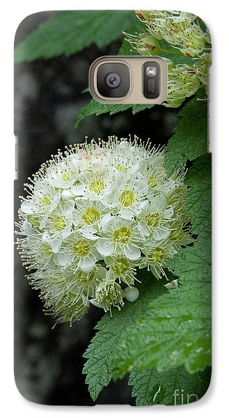 Galaxy Case featuring the photograph Flower Ball by Rod Wiens