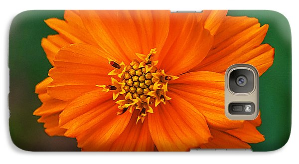 Galaxy Case featuring the photograph Flower Color by Edward Peterson