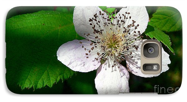 Galaxy Case featuring the photograph Flower In Shadow by Larry Keahey
