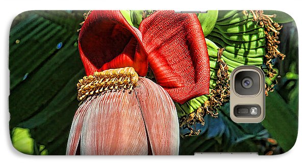 Galaxy Case featuring the photograph Flower Power by HH Photography of Florida