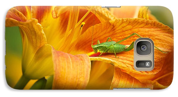 Flower With Company Galaxy S7 Case by Christina Rollo