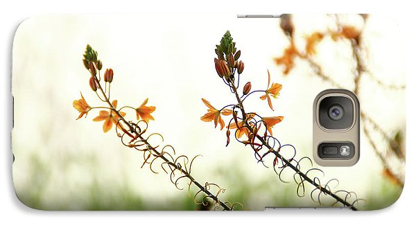 Galaxy Case featuring the photograph Flowering In Israel At The Sunset by Yoel Koskas