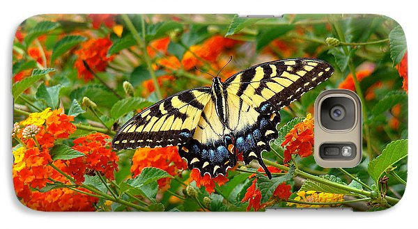 Galaxy Case featuring the photograph Flowers For Butterflies by Sue Melvin