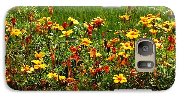 Galaxy Case featuring the photograph Flowers In The Fields by Joseph Frank Baraba