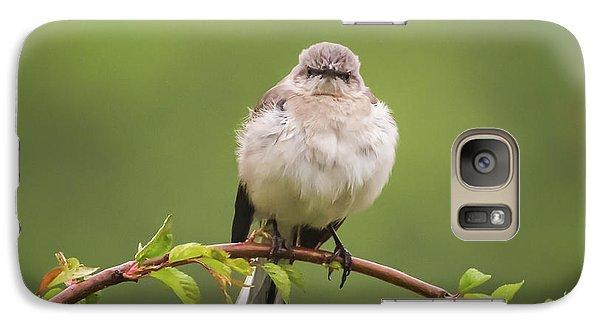 Fluffy Mockingbird Galaxy S7 Case by Terry DeLuco