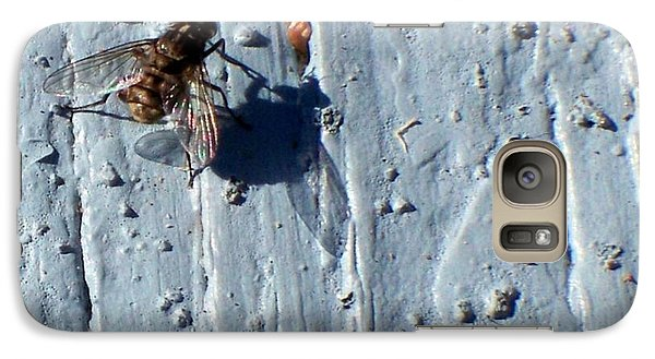 Galaxy Case featuring the photograph Fly On The Wall by Betty Northcutt