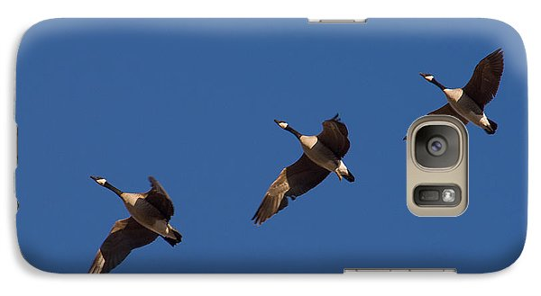 Galaxy Case featuring the photograph Flying In Formation by Monte Stevens